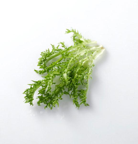 全景素材图片库 蔬菜
